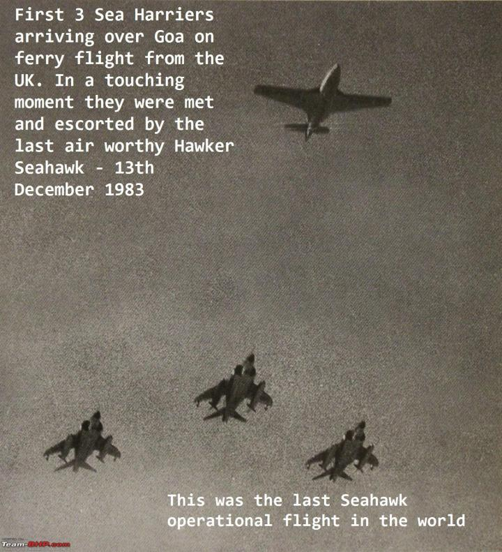 Harriers and Seahawk